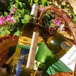 Box – 2 bouteilles de vin blanc